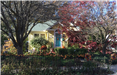 October Yard of the Month, 4545 12th Avenue