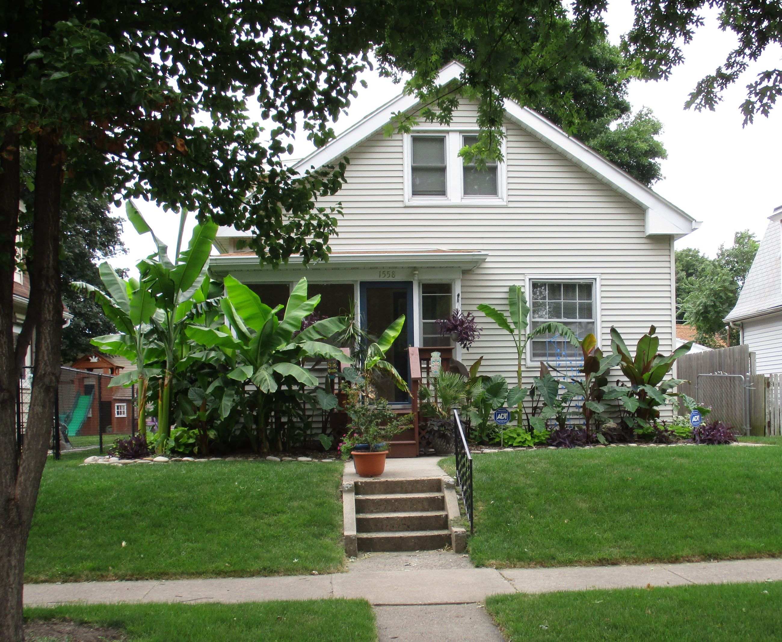 August Yard of the Month, 1558 43rd Street