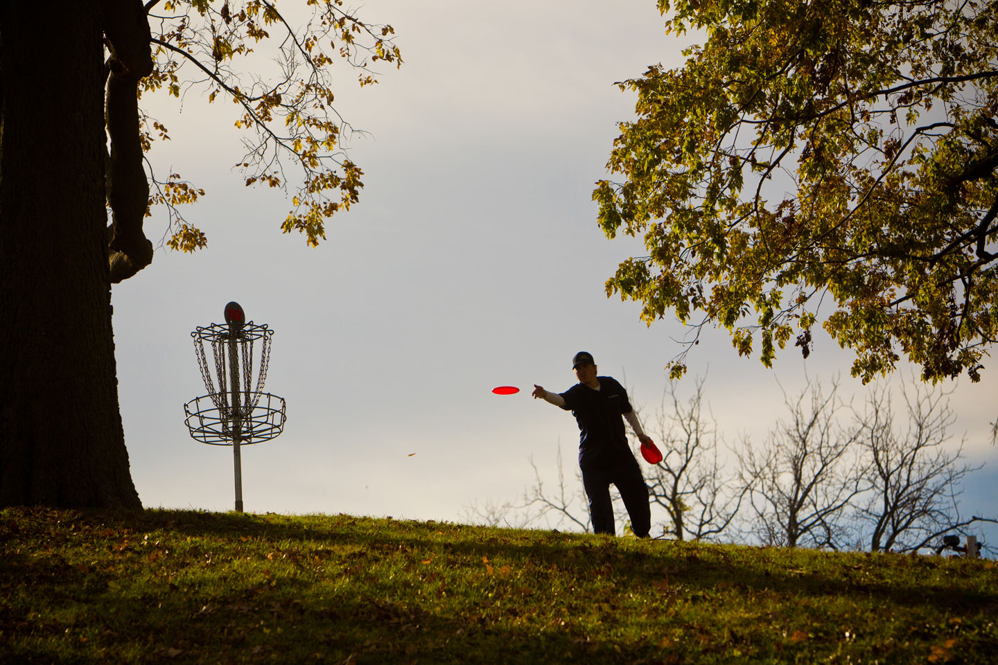 Longview Park Disc Golf